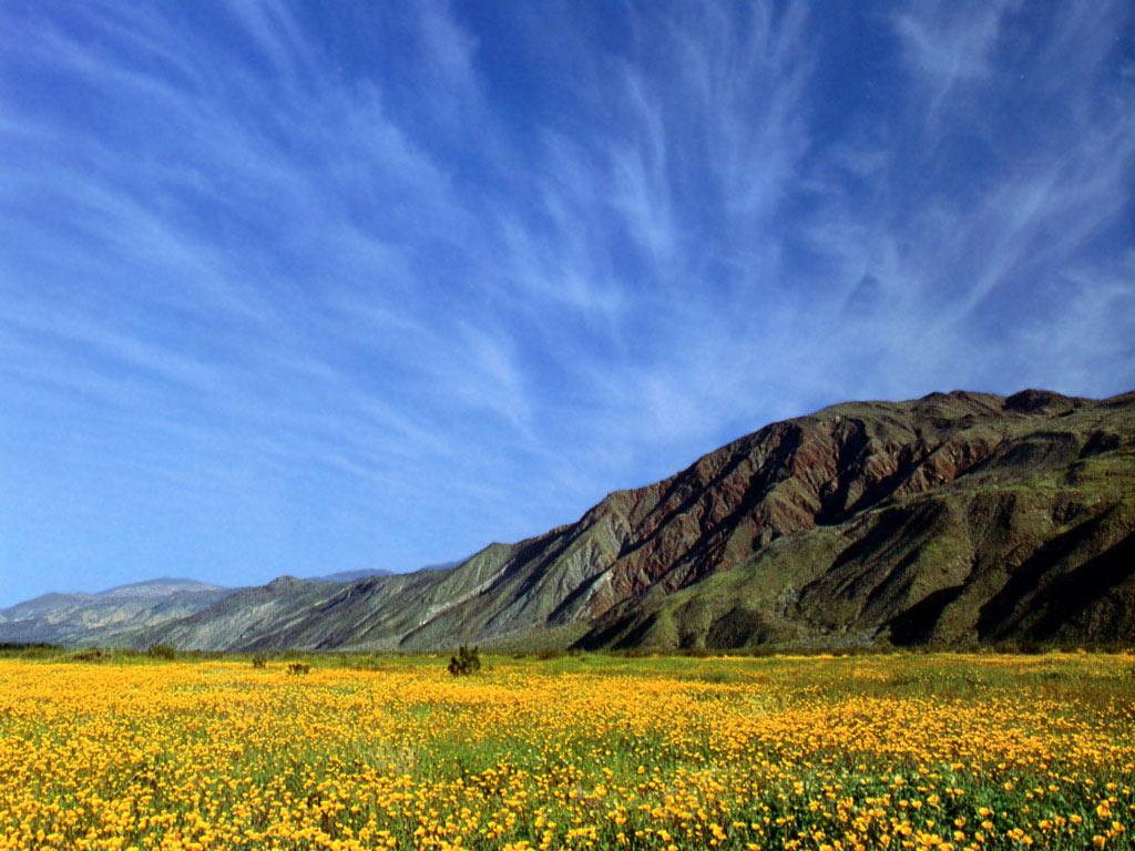 صور الطبيعة الام الجميلة - صور جميلة من وحي الطبيعة